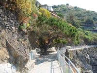 The Blue Path - Part Manarola - Corniglia, 4320x3240, 2.53 MB