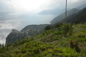 The Sanctuaries Ways - Cinque Terre